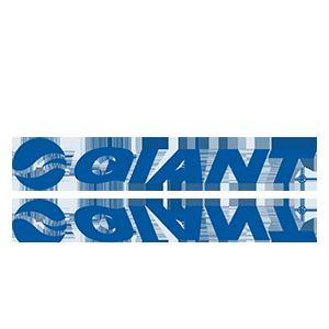 Giant_01